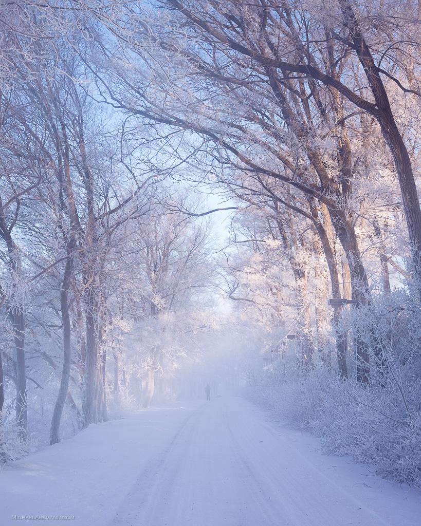 MiA_Cold_Montreal_20160214_8099