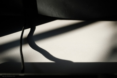 MiA_office shadows_20180509_3476